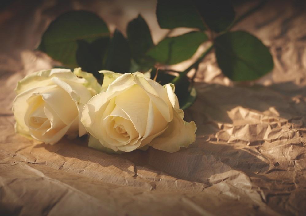 bereavement process